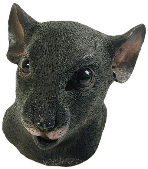 Rattenmaske schweiz
